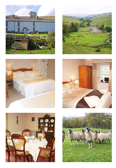 Summer Lodge Holiday Accommodation Gallery